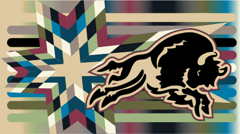 SKC Official Colors in Star Quilt Patter and Charging Bison Logo