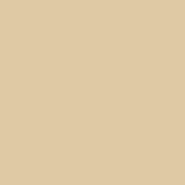 VEGAS GOLD Pantone 468 C Pantone 7501 U R-223 G-201 B-162 C-12.38 M-18.13 Y-38.54 K-0 HEX #dfc9a2