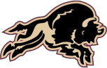 Outlined Bison Logo