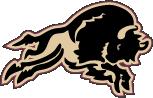 Outlined Bison Logo